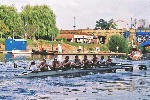 Mixed IM3 VIII